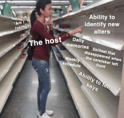 Schedule, Ability, and The Host: Ability to  identify new  alters  'Am I  faking??  Daily  memories Skillset that  The host  dissappeared when  the caretaker left  Weekly  front  schedule  Ability to find  keys