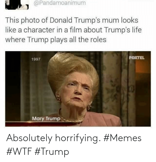 absolutely: Absolutely horrifying. #Memes #WTF #Trump