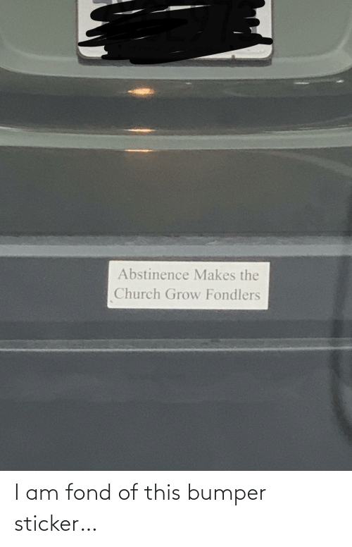 Sticker: Abstinence Makes the  Church Grow Fondlers I am fond of this bumper sticker…