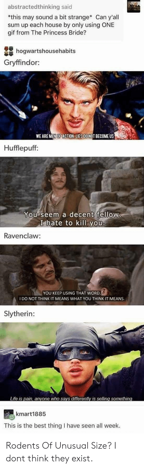 Gryffindor: abstractedthinking said  *this may sound a bit strange Can y'all  sum up each house by only using ONE  gif from The Princess Bride?  hogwartshousehabits  Gryffindor:  WE ARE MEN OF ACTION LIES DONOT BECOME US  Hufflepuff:  You seem a decent fellow  I hate to kill you  Ravenclaw:  YOU KEEP USING THAT WORD.  IDO NOT THINK IT MEANS WHAT YOU THINK IT MEANS.  Slytherin:  Life is pain, anyone who says differently is selling something  kmart1885  This is the best thing I have seen all week. Rodents Of Unusual Size? I dont think they exist.