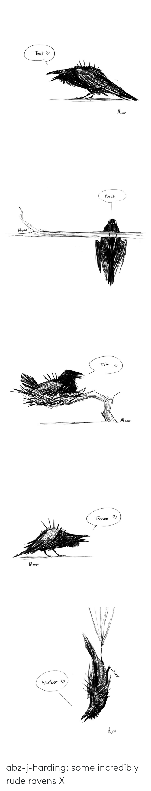 Rude: abz-j-harding: some incredibly rude ravens X