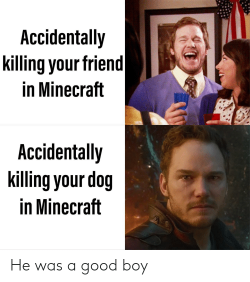 Minecraft, Good, and Boy: Accidentally  killing your friend  in Minecraft  Accidentally  killing your dog  in Minecraft He was a good boy