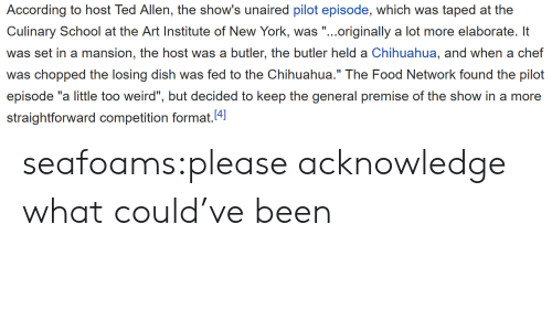 """Chihuahua, Food, and Food Network: According to host Ted Allen, the show's unaired pilot episode, which was taped at the  Culinary School at e Ari Insic of Now York, .originally a lot more elaborat l  was set in a mansion, the host was a butler, the butler held a Chihuahua, and when a chef  was chopped the losing dish was fed to the Chihuahua."""" The Food Network found the pilot  episode """"a little too weird"""", but decided to keep the general premise of the show in a more  straightforward competition format.4 seafoams:please acknowledge what could've been"""