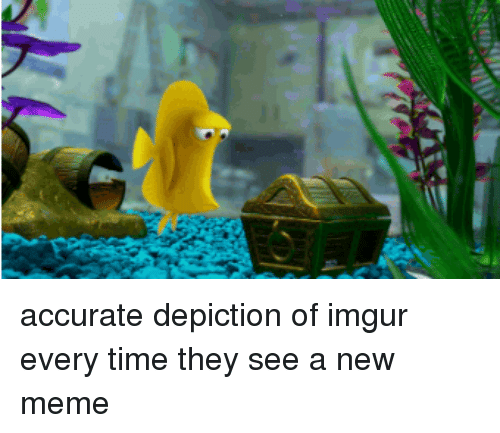 Meme, Imgur, and Time: accurate depiction of imgur every time they see a new meme