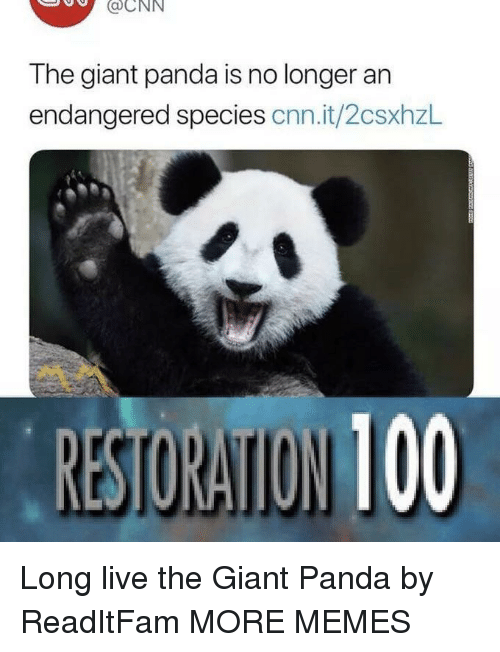 cnn.com, Dank, and Memes: aCNN  The giant panda is no longer an  endangered species cnn.it/2csxhzl Long live the Giant Panda by ReadItFam MORE MEMES