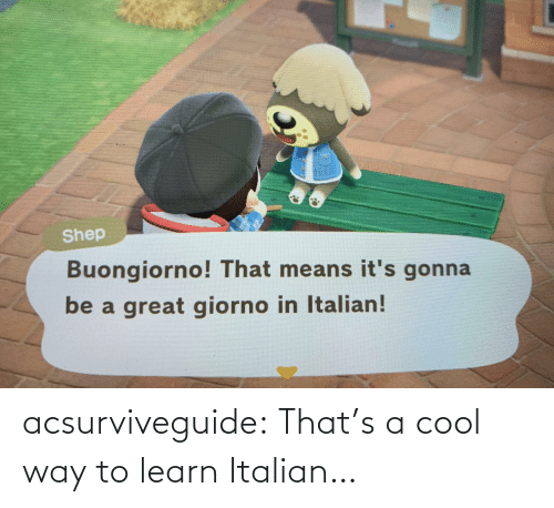 Learn: acsurviveguide:  That's a cool way to learn Italian…