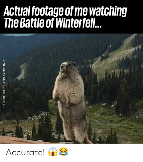 Dank, 🤖, and Accurate: Actual footage of me watching  The Battle of Winterfel Accurate! 😱😂