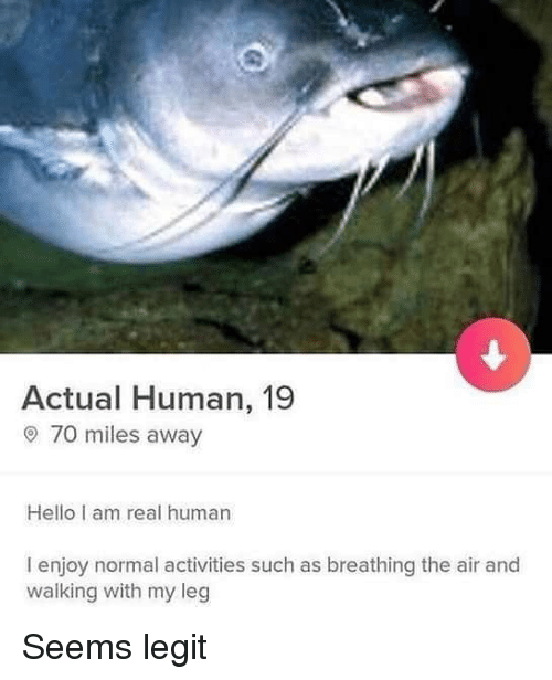 Hello, Memes, and 🤖: Actual Human, 19  o 70 miles away  Hello I am real human  I enjoy normal activities such as breathing the air and  walking with my leg Seems legit