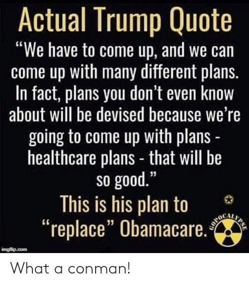 """You Dont Even Know: Actual Trump Quote  """"We have to come up, and we can  come up with many different plans.  In fact, plans you don't even know  about will be devised because we're  going to come up with plans  healthcare plans - that will be  so good  This is his plan to 3  """"replace"""" Obamacare.  13 What a conman!"""