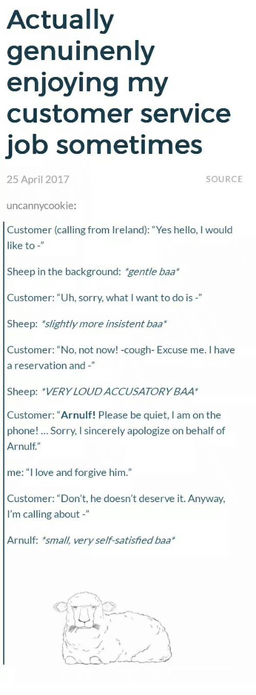 "Hello, Love, and Phone: Actually  genuinenly  enioving mv  customer service  job sometimes  25 April 2017  SOURCE  uncannycookie:  Customer (calling from Ireland): ""Yes hello, I would  like to -""  Sheep in the background: gentle baa*  Customer: ""Uh, sorry, what I want to do is-""  Sheep: slightly more insistent baa*  Customer: ""No, not now!-cough- Excuse me. I have  a reservation and -""  Sheep: *VERY LOUD ACCUSATORY BAA  Customer: ""Arnulf! Please be quiet, I am on the  phone! Sorry, I sincerely apologize on behalf of  Arnulf,""  me: ""I love and forgive him.""  Customer: ""Don't, he doesn't deserve it. Anyway,  I'm calling about -""  Arnulf: *small, very self-satisfied baa*"