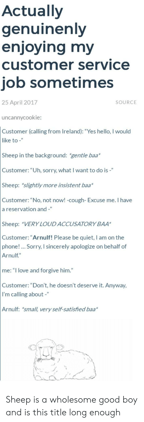 "Hello, Love, and Phone: Actually  genuinenly  enjoying my  customer service  job sometimes  25 April 2017  SOURCE  uncannycookie:  Customer (calling from Ireland): ""Yes hello, I would  like to -""  Sheep in the background: gentle baa*  Customer: ""Uh, sorry, what I want to do is-""  Sheep: slightly more insistent baa*  Customer: ""No, not now! -cough- Excuse me. I have  a reservation and -""  Sheep: VERY LOUDACCUSATORY BAA  Customer: ""Arnulf! Please be quiet, I am on the  phone!... Sorry, I sincerely apologize on behalf of  Arnulf""  me: ""I love and forgive him.""  Customer: ""Don't, he doesn't deserve it. Anyway,  I'm calling about -""  Arnulf: small, very self-satisfied baa Sheep is a wholesome good boy and is this title long enough"