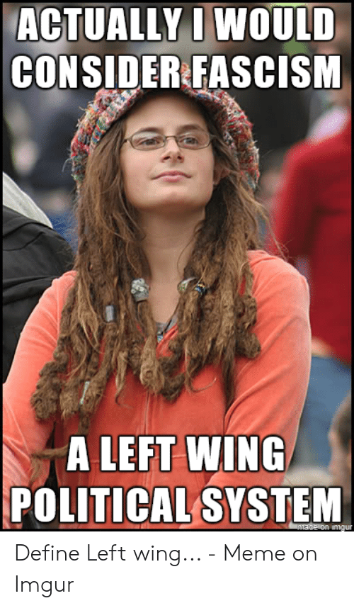 Define Meme: ACTUALLY I WOULD  CONSIDER FASCISM  A LEFT WING  POLITICAL SYSTEM  AERon imgur