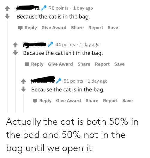 open: Actually the cat is both 50% in the bad and 50% not in the bag until we open it