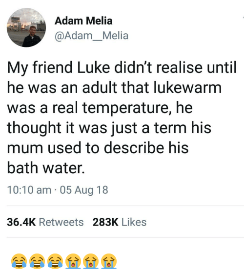 Bath Water: Adam Melia  @Adam_Melia  My friend Luke didn't realise until  he was an adult that lukewarm  was a real temperature, he  thought it was just a term his  mum used to describe his  bath water.  10:10 am 05 Aug 18  36.4K Retweets 283K Likes 😂😂😂😭😭😭