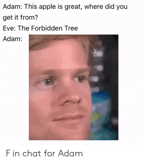 where did: Adam: This apple is great, where did you  get it from?  Eve: The Forbidden Tree  Adam: F in chat for Adam