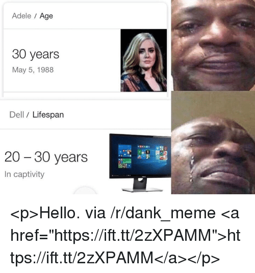 "May 5: Adele Age  30 years  May 5, 1988  Dell / Lifespan  20 - 30 years  In captivity <p>Hello. via /r/dank_meme <a href=""https://ift.tt/2zXPAMM"">https://ift.tt/2zXPAMM</a></p>"