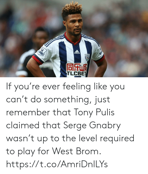Adidas, Soccer, and Albion: adidas  ALBION  AYS  TLCBET If you're ever feeling like you can't do something, just remember that Tony Pulis claimed that Serge Gnabry wasn't up to the level required to play for West Brom. https://t.co/AmriDnlLYs