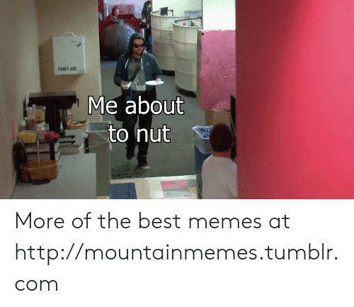 Memes, Tumblr, and Best: aditlar  PIRST AID  Me about  to nut More of the best memes at http://mountainmemes.tumblr.com