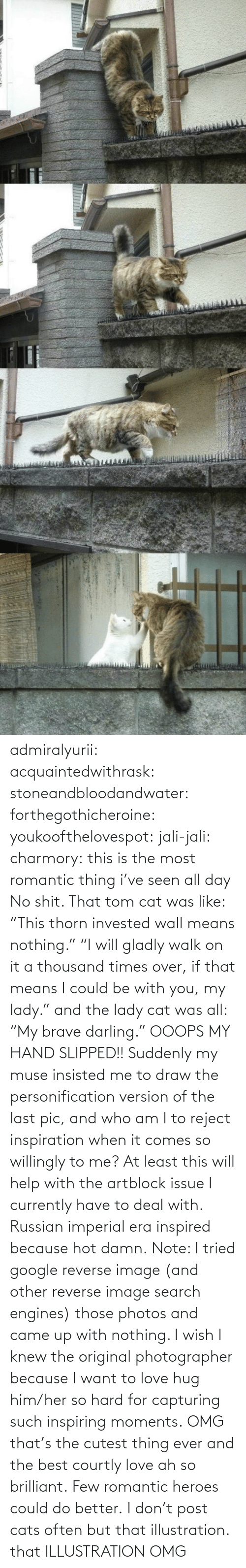 "Reverse: admiralyurii: acquaintedwithrask:  stoneandbloodandwater:  forthegothicheroine:  youkoofthelovespot:  jali-jali:  charmory:  this is the most romantic thing i've seen all day  No shit. That tom cat was like: ""This thorn invested wall means nothing."" ""I will gladly walk on it a thousand times over, if that means I could be with you, my lady."" and the lady cat was all: ""My brave darling."" OOOPS MY HAND SLIPPED!!  Suddenly my muse insisted me to draw the personification version of the last pic, and who am I to reject inspiration when it comes so willingly to me? At least this will help with the artblock issue I currently have to deal with. Russian imperial era inspired because hot damn. Note: I tried google reverse image (and other reverse image search engines) those photos and came up with nothing. I wish I knew the original photographer because I want to love hug him/her so hard for capturing such inspiring moments.  OMG that's the cutest thing ever and the best courtly love ah so brilliant.  Few romantic heroes could do better.  I don't post cats often but that illustration.  that ILLUSTRATION    OMG"