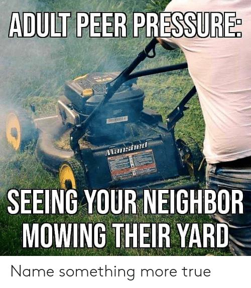 Mowing: ADULT PEER PRE  ished  SEEING YOUR NEIGHBOR  MOWING THEIR YARD Name something more true
