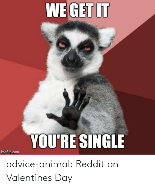 Valentine's Day: advice-animal:  Reddit on Valentines Day