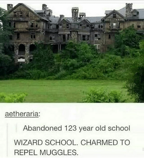Repeled: aetheraria:  Abandoned 123 year old school  WIZARD SCHOOL. CHARMED TO  REPEL MUGGLES.