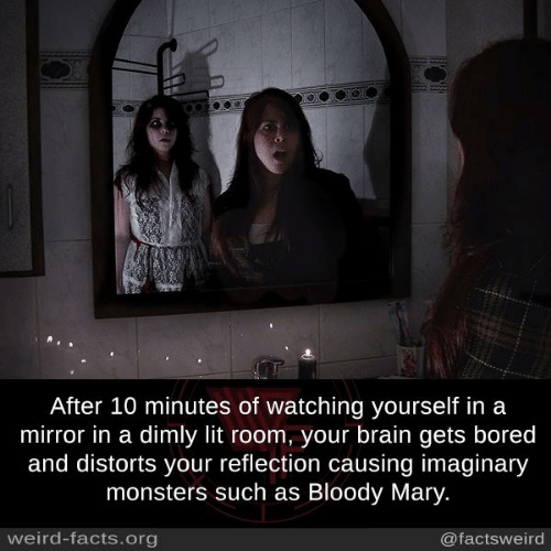 Bored, Facts, and Lit: After 10 minutes of watching yourself in a  mirror in a dimly lit room, your brain gets bored  and distorts your reflection causing imaginary  monsters such as Bloody Mary.  weird-facts.org  @factsweird