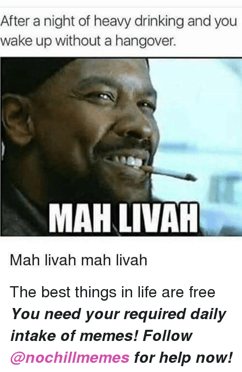 Drinking, Life, and Memes: After a night of heavy drinking and you  wake up without a hangover.  MAH LIVAH  Mah livah mah livah <p>The best things in life are free</p><p><b><i>You need your required daily intake of memes! Follow <a>@nochillmemes</a>​ for help now!</i></b><br/></p>