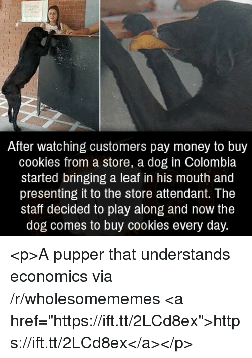 "Cookies, Money, and Colombia: After watching customers pay money to buy  cookies from a store, a dog in Colombia  started bringing a leaf in his mouth and  presenting it to the store attendant. The  staff decided to play along and now the  dog comes to buy cookies every day. <p>A pupper that understands economics via /r/wholesomememes <a href=""https://ift.tt/2LCd8ex"">https://ift.tt/2LCd8ex</a></p>"