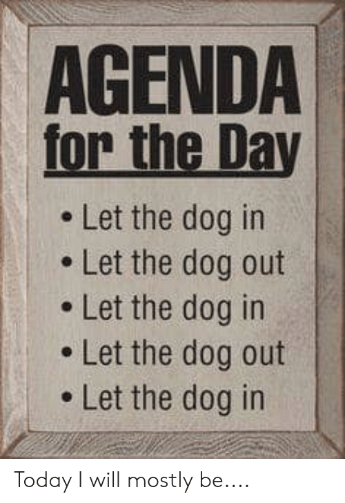 Memes, Today, and 🤖: AGENDA  for the Day  . Let the dog in  e Let the dog out  . Let the dog in  . Let the dog out  . Let the dog in Today I will mostly be....