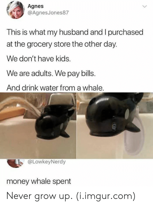 never grow up: Agnes  @AgnesJones87  This is what my husband and I purchased  at the grocery store the other day.  We don't have kids.  We are adults. We pay bills  And drink water from a whale  @LowkeyNerdy  money whale spent Never grow up. (i.imgur.com)