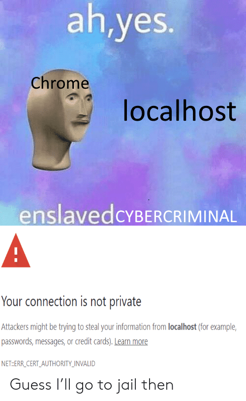Messages: ah,yes.  Chrome  localhost  enslavedcYBERCRIMINAL  A  Your connection is not private  Attackers might be trying to steal your information from localhost (for example  passwords,messages, or credit cards). Learn more  NET:ERR_CERT_AUTHORITY_INVALID Guess I'll go to jail then