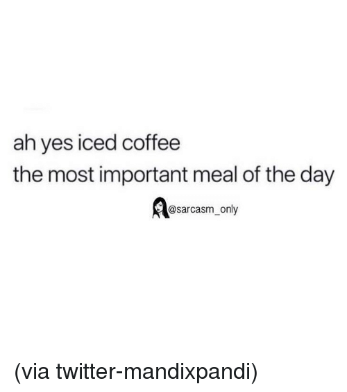 Funny, Memes, and Twitter: ah yes iced coffee  the most important meal of the day  @sarcasm_only (via twitter-mandixpandi)