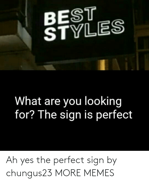perfect: Ah yes the perfect sign by chungus23 MORE MEMES
