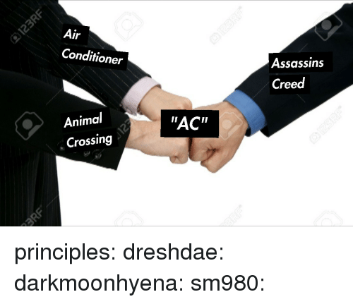 "Target, Tumblr, and Air Conditioner: Air  Conditioner  Assassins  Creed  Animal  Crossing  ""AC"" principles:  dreshdae:  darkmoonhyena:  sm980:"