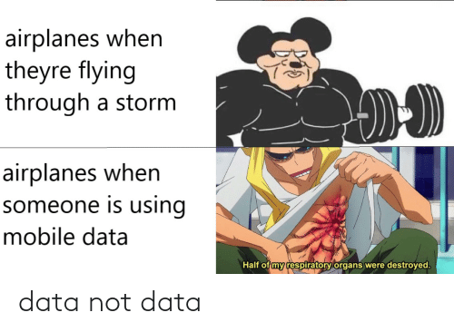 Flying Through: airplanes when  theyre flying  through a storm  airplanes when  someone is using  mobile data  Half of my respiratory organs were destroyed. data not data
