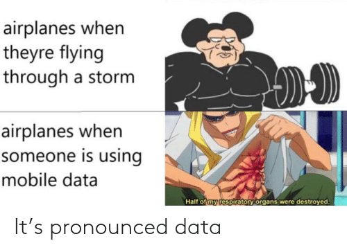 Flying Through: airplanes when  theyre flying  through a storm  airplanes when  someone is using  mobile data  Half of my respiratory organs were destroyed. It's pronounced data