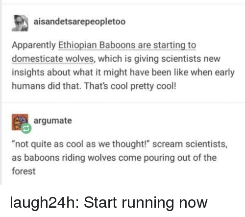 """Apparently, Club, and Scream: aisandetsarepeopletoo  Apparently Ethiopian Baboons are starting to  domesticate wolves, which is giving scientists new  insights about what it might have been like when early  humans did that. That's cool pretty cool!  argumate  t quite as cool as we thought!"""" scream scientist  as baboons riding wolves come pouring out of the  forest laugh24h:  Start running now"""