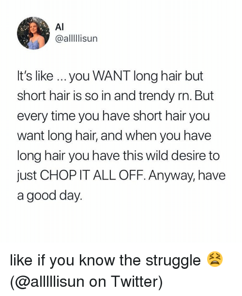 Memes, Struggle, and Twitter: Al  @alllIlisun  It's like ...you WANT long hair but  short hair is so in and trendy rn. But  every time you have short hair you  want long hair, and when you have  long hair you have this wild desire to  just CHOP IT ALL OFF. Anyway, have  a good day like if you know the struggle 😫 (@alllllisun on Twitter)