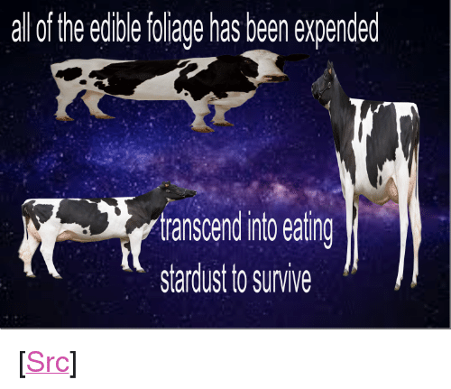 """Reddit, Been, and Stardust: al lof the edible foliage has been expended  tanscen ito eating  stardust to survive <p>[<a href=""""https://www.reddit.com/r/surrealmemes/comments/7ll8vv/expended/"""">Src</a>]</p>"""