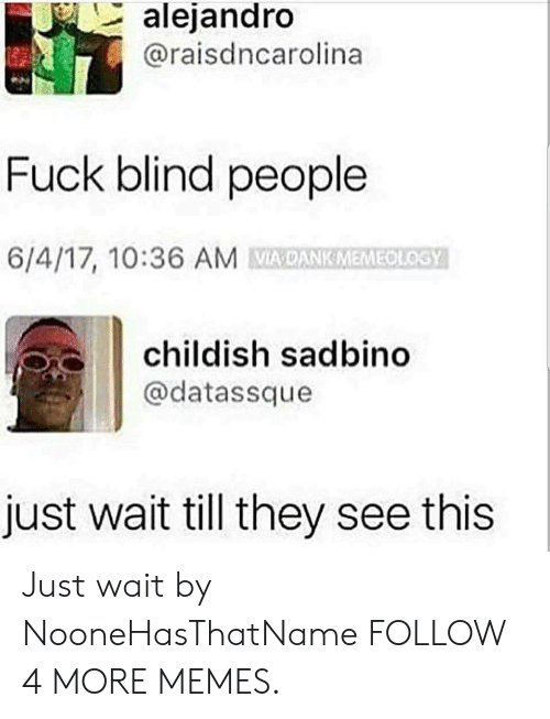 Wait Till: alejandro  @raisdncarolina  Fuck blind people  6/4/17, 10:36 AM DANKMEMEOLOSY  childish sadbino  @datassque  just wait till they see this Just wait by NooneHasThatName FOLLOW 4 MORE MEMES.