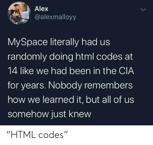 "html: Alex  @alexmalloyy  MySpace literally had us  randomly doing html codes at  14 like we had been in the CIA  for years. Nobody remembers  how we learned it, but all of us  somehow just knew ""HTML codes"""