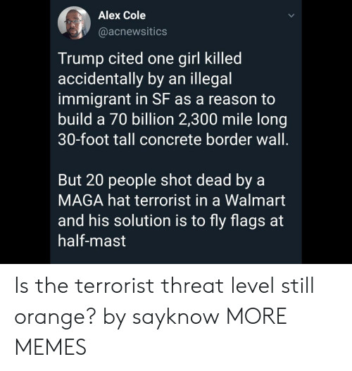 Dank, Memes, and Target: Alex Cole  @acnewsitics  Trump cited one girl killed  accidentally by an illegal  immigrant in SF as a reason to  build a 70 billion 2,300 mile long  30-foot tall concrete border wall.  But 20 people shot dead by a  MAGA hat terrorist in a Walmart  and his solution is to fly flags at  half-mast Is the terrorist threat level still orange? by sayknow MORE MEMES