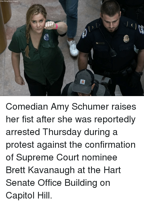 Amy Schumer, Memes, and Protest: (Alex Wong/Getty Images) Comedian Amy Schumer raises her fist after she was reportedly arrested Thursday during a protest against the confirmation of Supreme Court nominee Brett Kavanaugh at the Hart Senate Office Building on Capitol Hill.