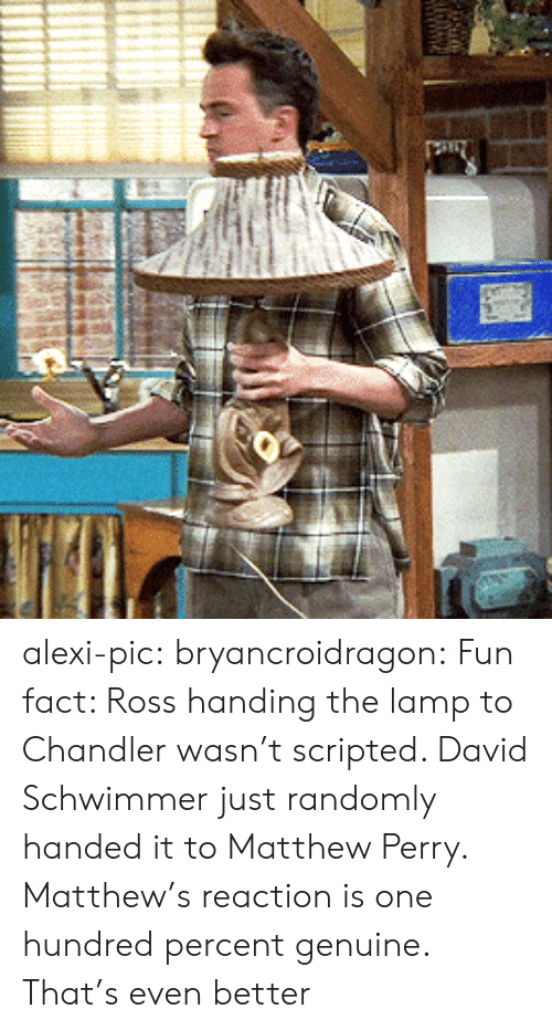 David Schwimmer, Matthew Perry, and Target: alexi-pic: bryancroidragon:  Fun fact: Ross handing the lamp to Chandler wasn't scripted. David Schwimmer just randomly handed it to Matthew Perry. Matthew's reaction is one hundred percent genuine.  That's even better