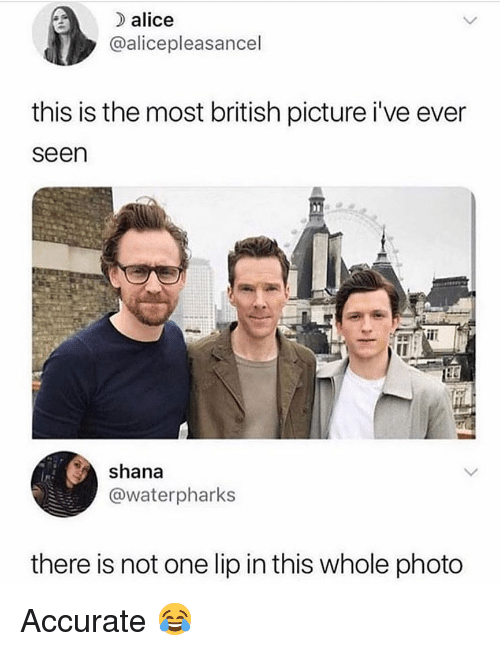 Memes, British, and 🤖: ) alice  @alicepleasancel  this is the most british picture i've ever  seen  shana  @waterpharks  there is not one lip in this whole photo Accurate 😂