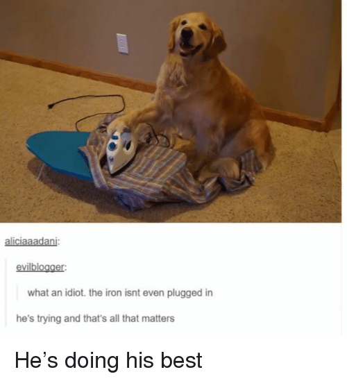 Best, All That, and Idiot: aliciaaadani:  evilblogger  what an idiot. the iron isnt even plugged in  he's trying and that's all that matters He's doing his best