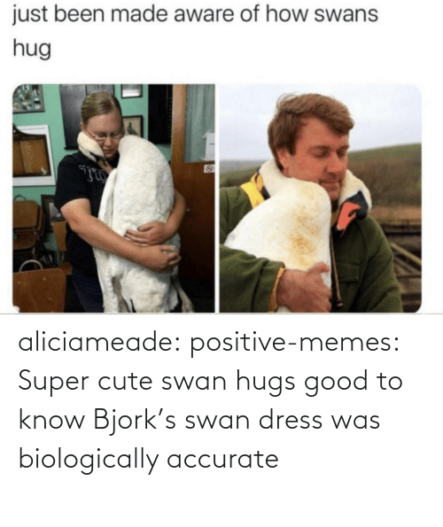 Dress: aliciameade: positive-memes: Super cute swan hugs good to know Bjork's swan dress was biologically accurate