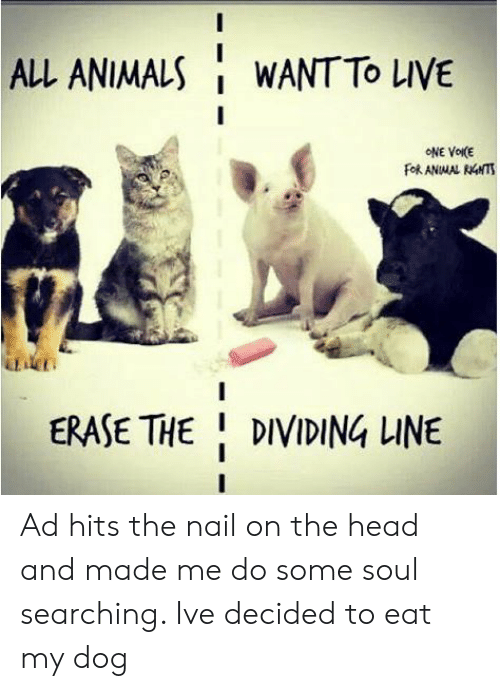 Erase: ALL ANIMALS  WANT TO LIVE  ONE VOIKE  FORANMAL RNTS  DT  ERASE THE DIVIDING LINE Ad hits the nail on the head and made me do some soul searching. Ive decided to eat my dog