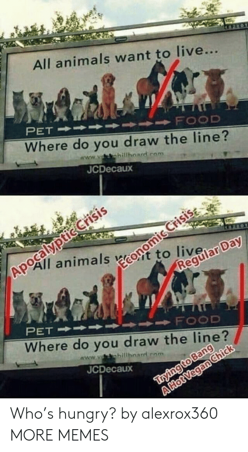 Animals, Dank, and Food: All animals want to live...  Where do you draw the line?  www.vsshillboard com  JCDecaux  №0All animals ecost to livela  FOOD  Where do you draw the line?  www.yohillhoarrl rom  JCDecaux Who's hungry? by alexrox360 MORE MEMES